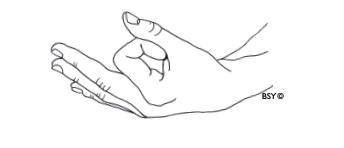 Satyananda Yoga Mudra