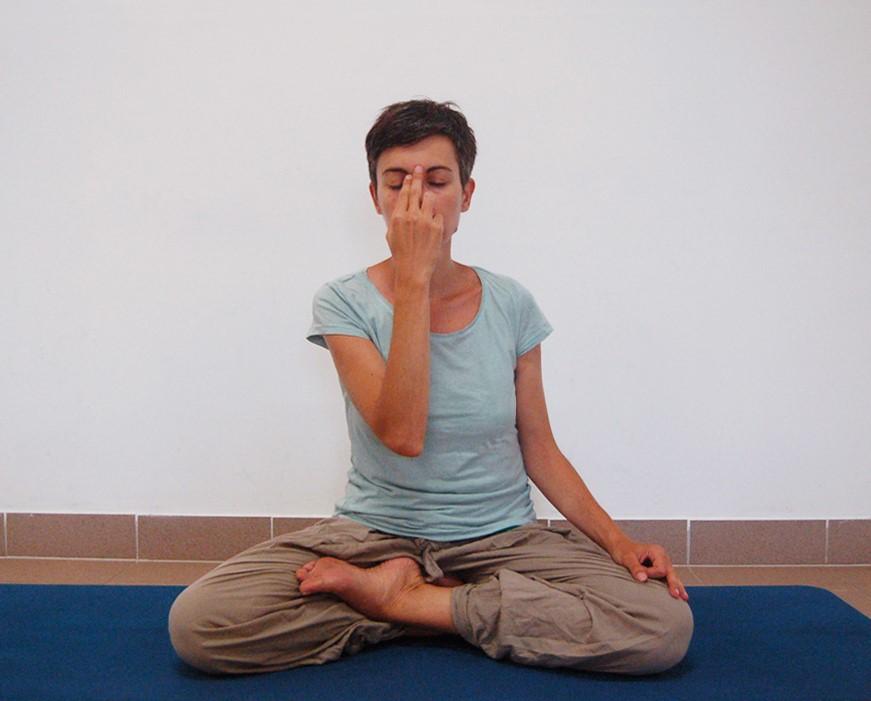 h_Satyananda Yoga Academy Europe nadi shodana pranayama ...